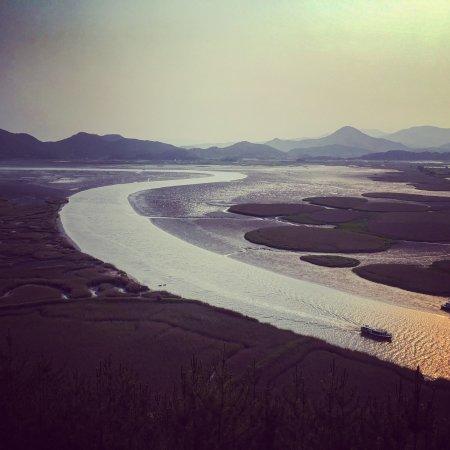 Suncheon Bay Eco Park