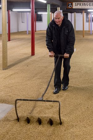 Campbeltown, UK: Malting process