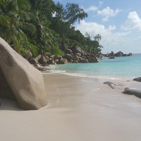 Praslin Adası, Seyşeller: IMG_20170627_202705_688_large.jpg