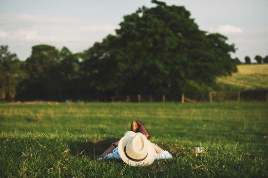 Mallard Grange: Relax