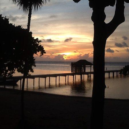 Sundancer Cabanas Roatan Beach Front Foto