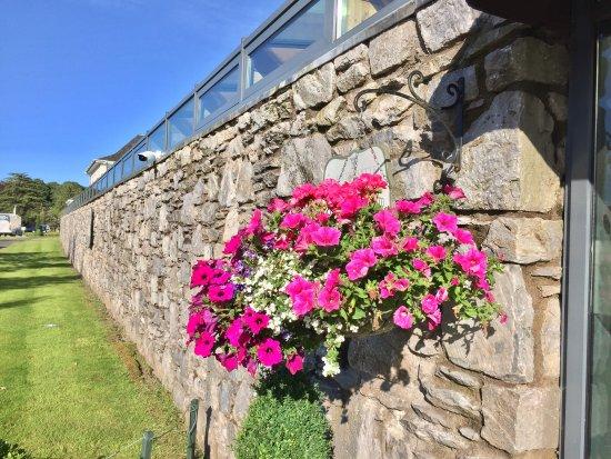 Castlemartyr, Ireland: photo6.jpg