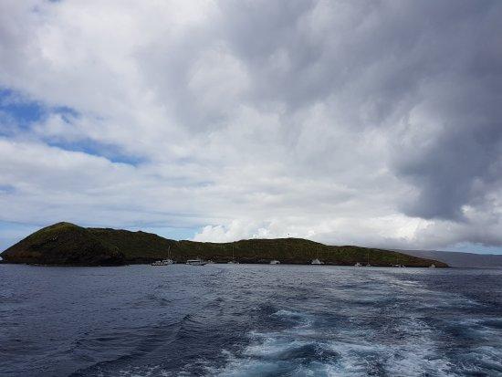Maalaea, Havaí: 20170626_092300_large.jpg