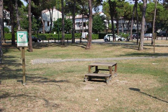 Parco Hemingway