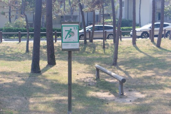 Parco Hemingway : Серия площадок для спортивных упражнений