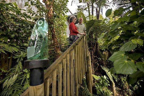 Okarito, Selandia Baru: Walkway through Native Forest to gallery