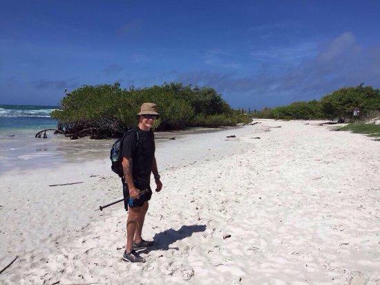 Galapagos Beach at Tortuga Bay: photo0.jpg