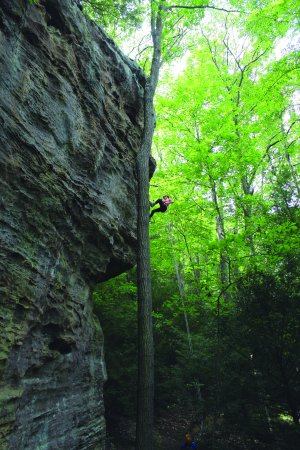 Rockbridge, OH: Rappelling at High Rock Adventures-Hocking Hills Ecotours