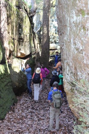 Rockbridge, OH: Eco-Nature Tours at High Rock Adventures-Hocking Hills Ecotours