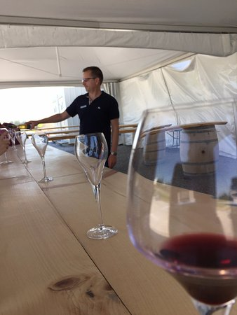 Grape Escape Wine Tours: PondView