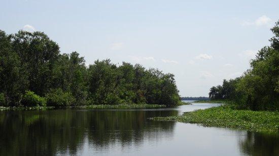 De Leon Springs, Flórida: Lake Woodruff National Wildlife Refuge