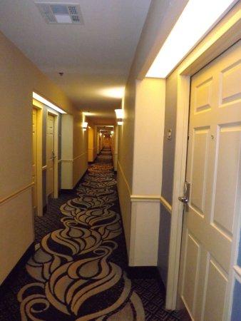 Houma, LA: Hallway 3rd floor