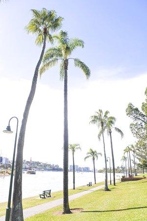 브리즈번 사진