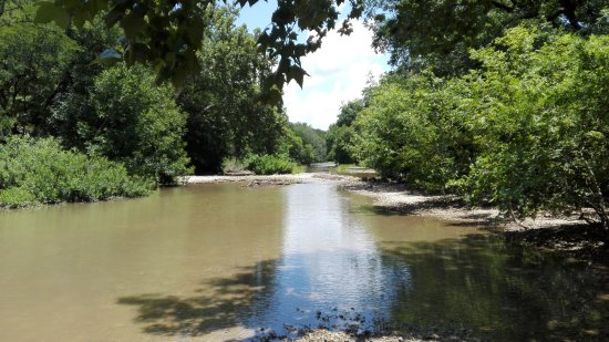 Barton Creek Greenbelt : IMG_20170627_134305_large.jpg