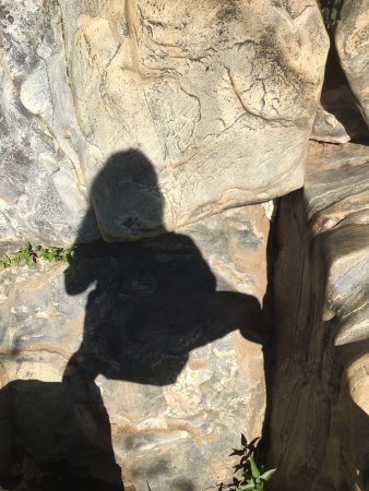 Potomac, MD: hiking with my shadow