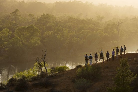 Renmark, Austrália: Immerse yourself in the Murray River landscape