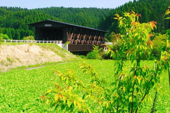 Asobo Bridge