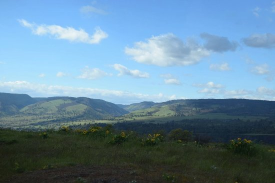 Mosier, OR: The final one the view is looking over toward WA and it's incredible.