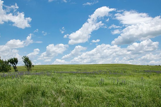 Оклахома: The preserve is as much sky as it is grass. Cloud formations make for dramatic scenes.