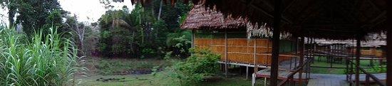 Cumaceba Amazon Lodge Image