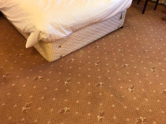 Bredbury Hall Hotel: photo2.jpg