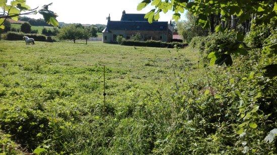 Surques, Frankrike: Uitzicht op de oude ferme met gites