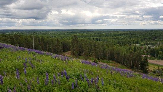 Kouvola, Finlandiya: 20170628_121325_large.jpg