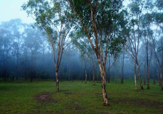 Deja Vu Estate Image