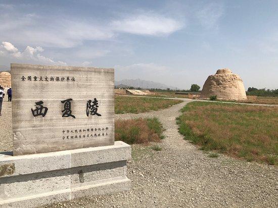 Yinchuan, China: photo6.jpg