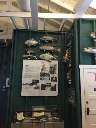 Museum of the Everglades: photo1.jpg