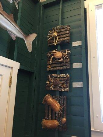 Museum of the Everglades: photo2.jpg