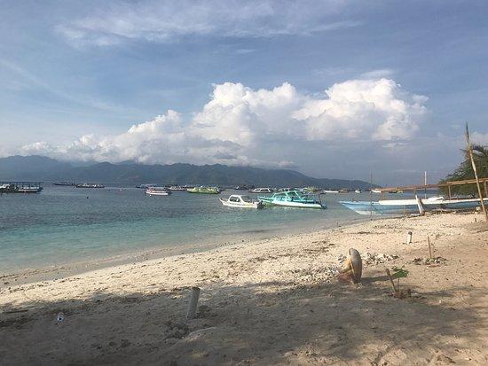 德拉娜安岛蓝马林潜水中心照片