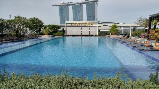 The Fullerton Bay Hotel Singapore: Rooftop pool and Lantern Bar