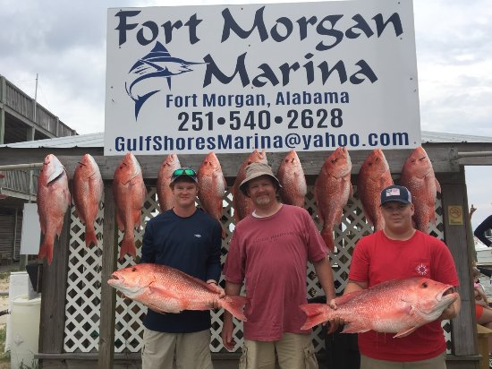 Red Eye Fishing Charters