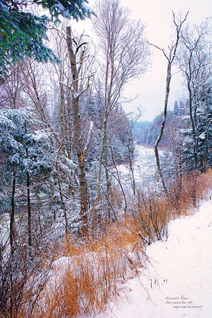 Wilmington, Нью-Йорк: Ausable River Alongside Whiteface Mountain
