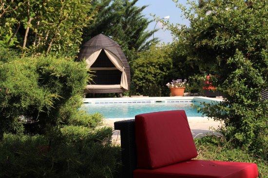 La Tour d'Aigues, France: Jardin vue piscine