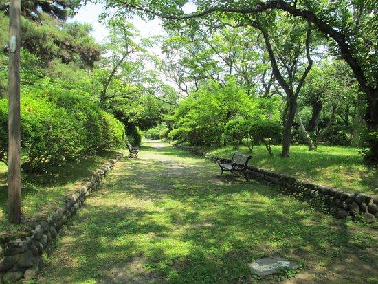 Mizusawa Park