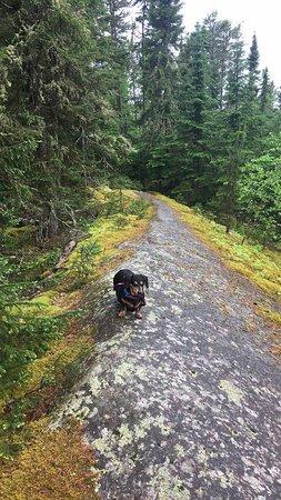 Dryden, Canada: Goblin Lake Trail