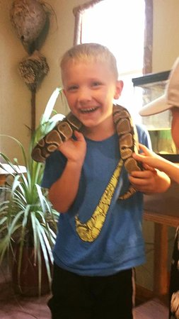 Stevens, เพนซิลเวเนีย: Reese loved holding the ball python too