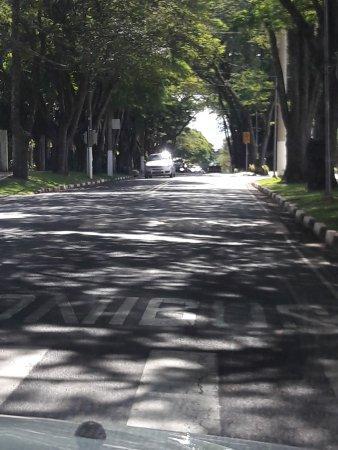 Rua da saída de Holambra em direção ao Moinho.