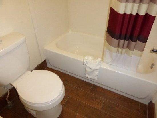 Caryville, TN: Bathroom
