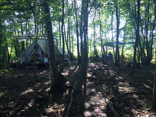 Horsted Keynes, UK: Faraway tent in the wood