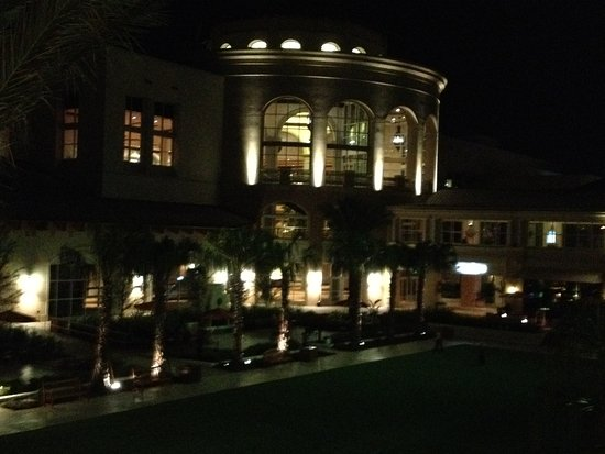 Window View - Picture of Gaylord Palms Resort & Convention Center, Kissimmee - Tripadvisor