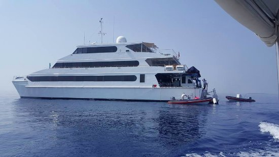 Four Seasons Resort Maldives at Landaa Giraavaru: The Yacht which goes for 3/4 night dive trips