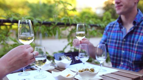 Vrbnik, Croatia: Snacking olives with wine tasting of three different wines at the winery Katunar