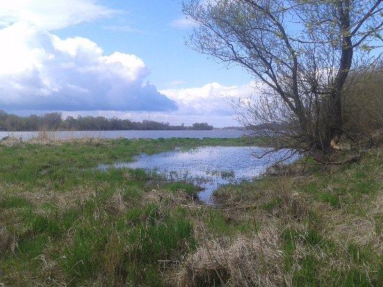 Nature Reserve Lawice Kielpinskie