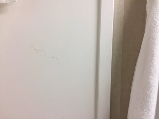 Linthicum Heights, MD: Hair on shower wall = NOT CLEAN
