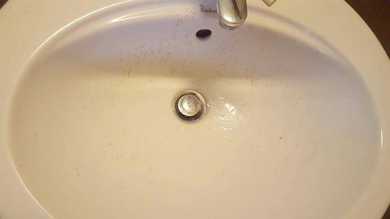 Grand Bourg, Guadeloupe: Des fourmis plein le lavabo à notre arrivée dans la chambre !