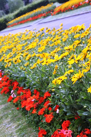 Southall: nice to relax and enjoy the flower displayed gardens