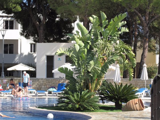 Matina Pefkos Aparthotel: Centre piece of the swimming pool